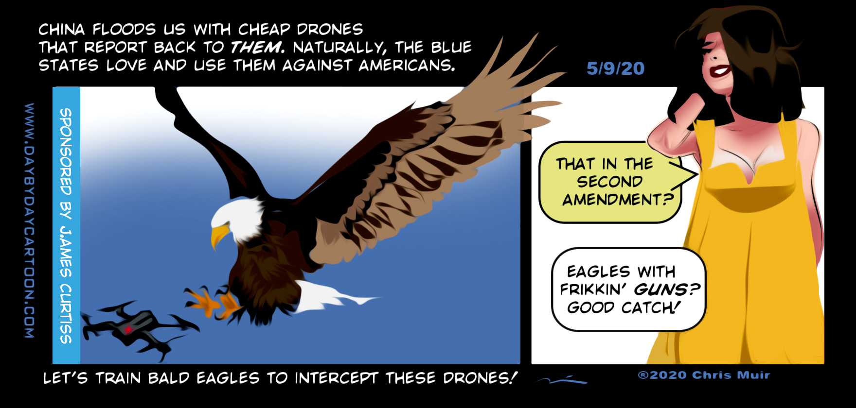 Eagles with Frikkin Guns. www.daybydaycartoon.com
